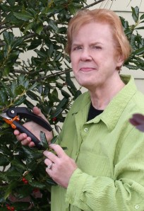 Judy Lowe crop