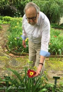 Jay Turman shows Hemerocallis 'Jay Turman.'